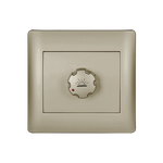 Dimmer Switch Rhyme Champagne Metallic